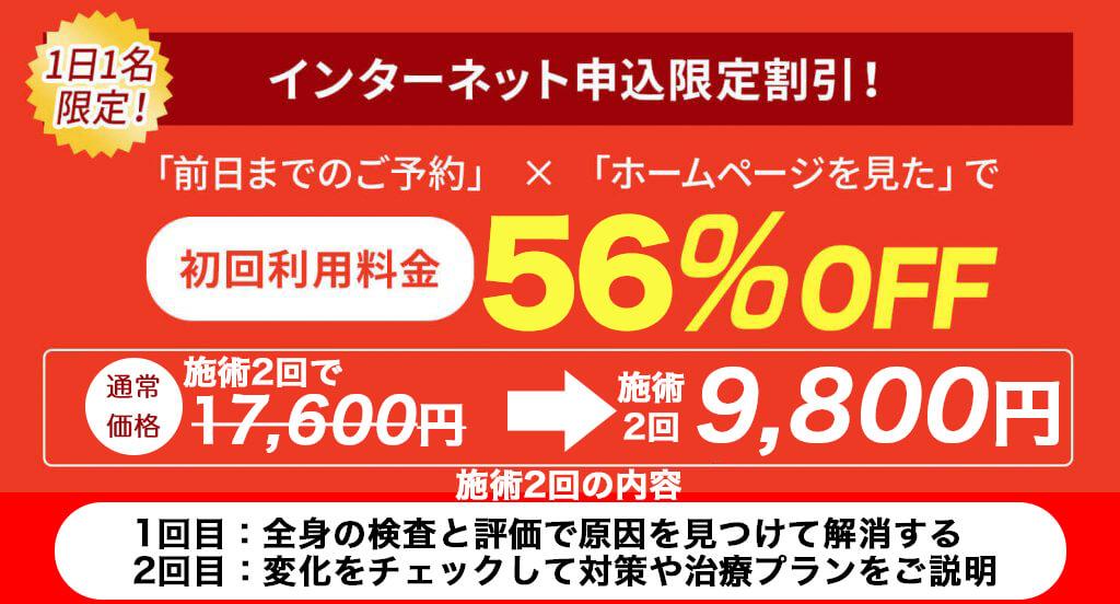 初回特別価格56%OFF